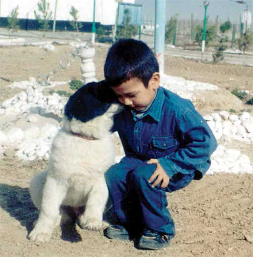 Boy with Central Asian Shepherd